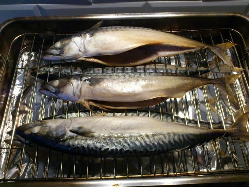 Makreel in tafelmodel smoker